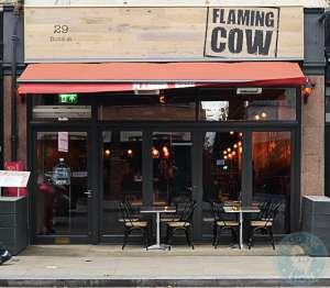 Flaming Cow Windsor
